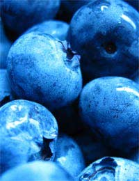 Superfruits Fruit Berries Health Diet